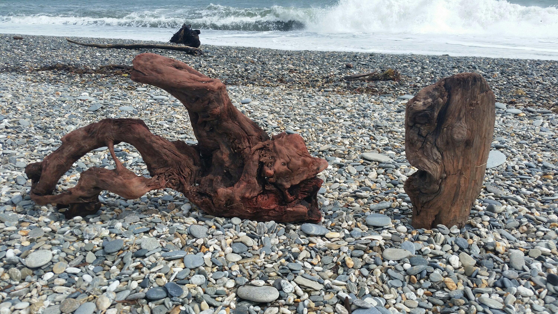 Sea Monster & Waterman
