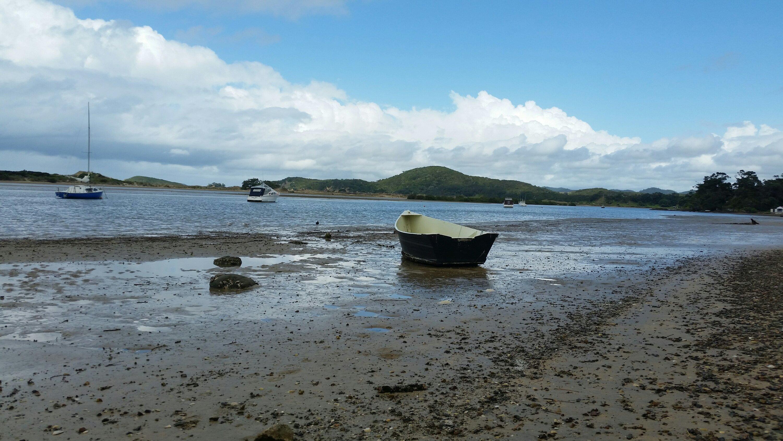 Low Tide at Tutukaka